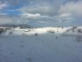 Vedere iarna
